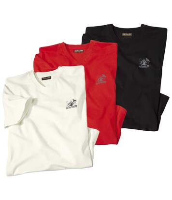 Set van 3 T-shirts South Wild Patagonia