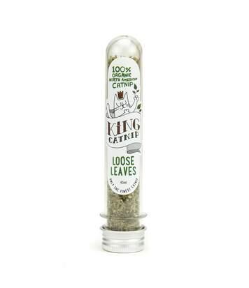 King Catnip - Herbe À Chats (Peut varier) (35 g) - UTTL3120