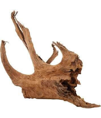 Racine naturelle Mangrove 40/60 cm