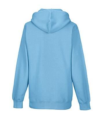 Sweatshirt À Capuche Russell Pour Homme (Bleu ciel) - UTBC568