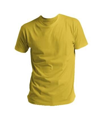 SOLS Mens Regent Short Sleeve T-Shirt (Lime) - UTPC288